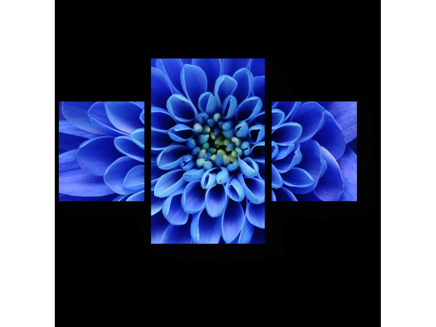 Модульная картина В сердце синего (80x52) фото