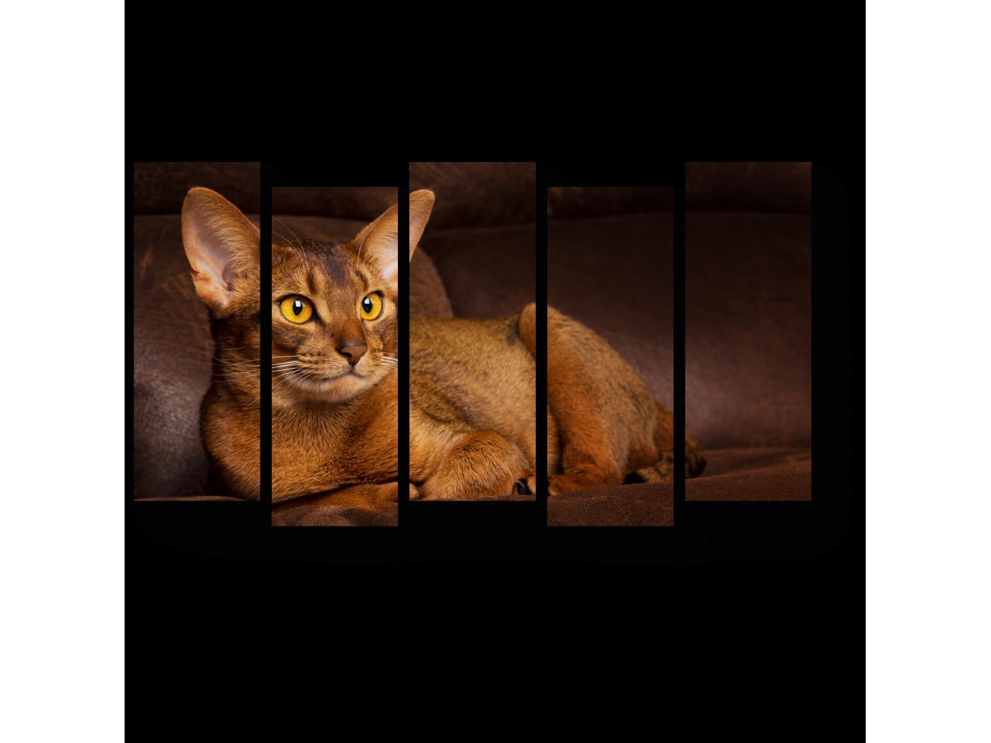 Модульная картина Охотник отдыхает (90x52) фото