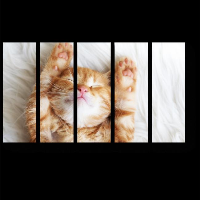 Модульная картина В теплой постельке