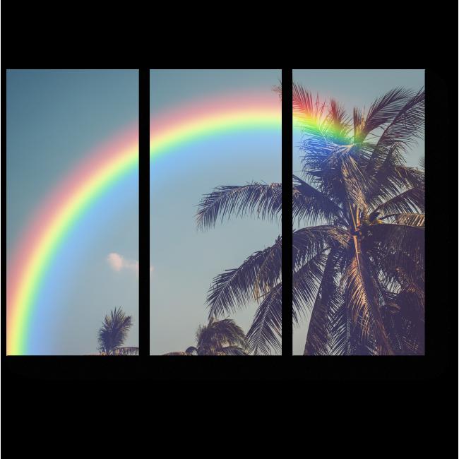 Модульная картина Радуга и пальмы