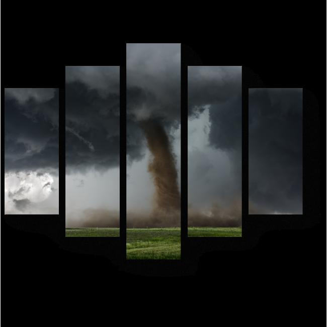 Модульная картина Берегись торнадо
