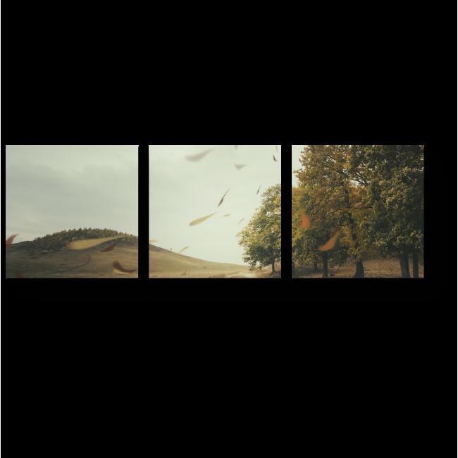 Модульная картина Ветер играет с листвой