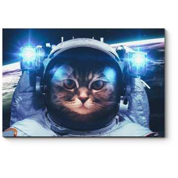 Модульная картина Кот-космонавт