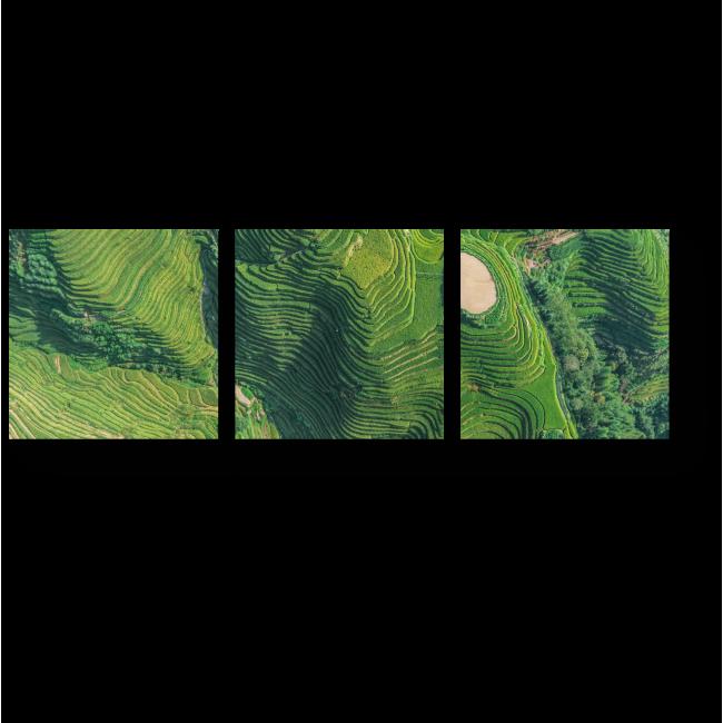 Модульная картина Линии рисовых полей