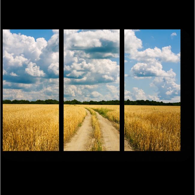 Модульная картина Теплый летний день в поле