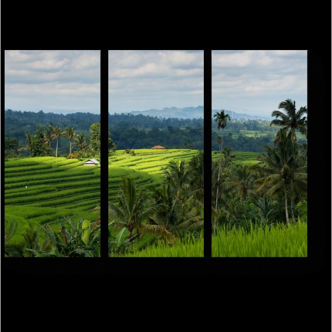 Модульная картина Бали, рисовые поля
