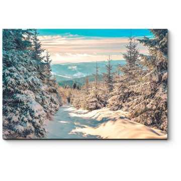 Модульная картина Зимняя тропа в солнечный день