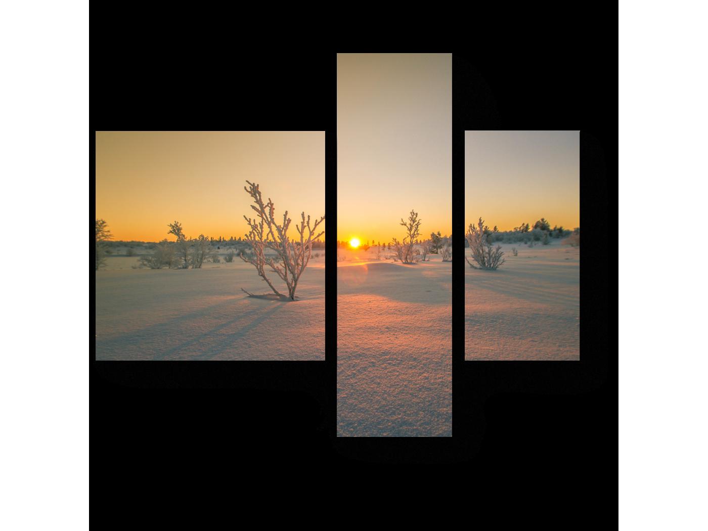 Модульная картина Снежная пустыня (80x66) фото