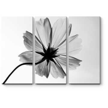 Модульная картина Монохромный цветок