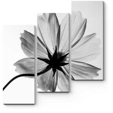 Монохромный цветок