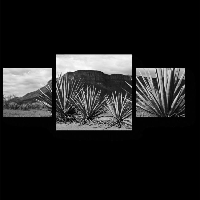 Модульная картина Мексиканский пейзаж