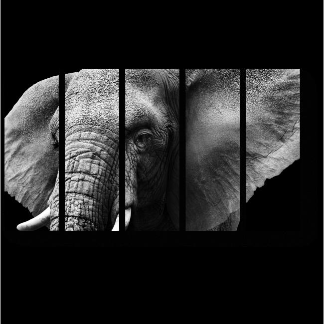Модульная картина Портрет слона