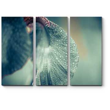 Модульная картина Капли дождя на ирисе