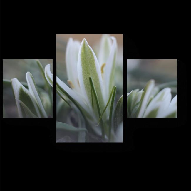 Модульная картина Весеннее пробуждение