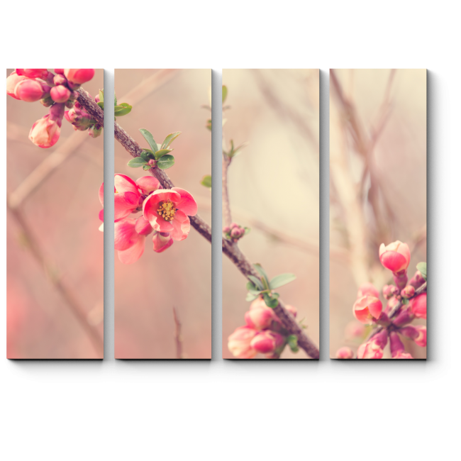 Модульная картина Розовые соцветия