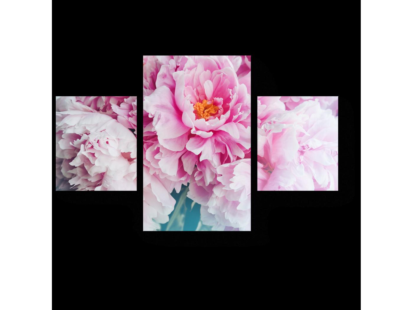 Модульная картина Нежно-розовые пионы (80x52) фото
