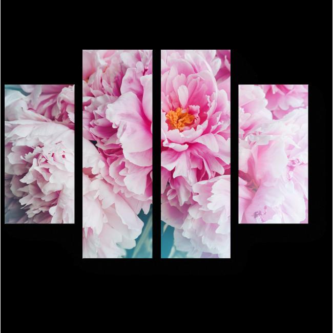 Модульная картина Нежно-розовые пионы