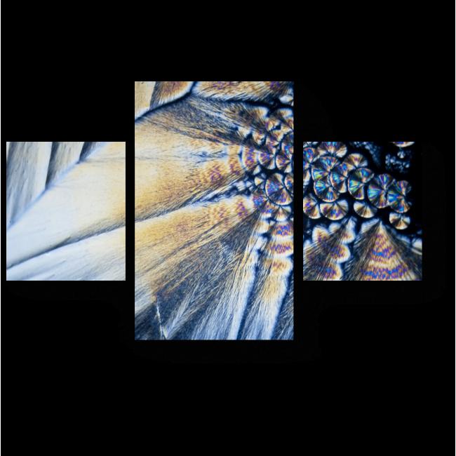 Модульная картина Микрокристаллы в поляризованном свете