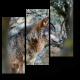 Волк спрятался между деревьями