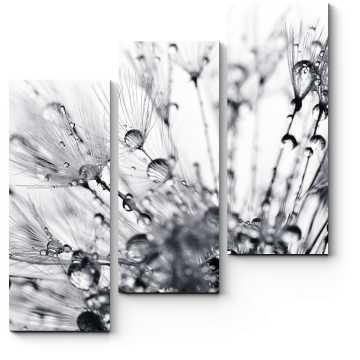 Модульная картина Капли росы