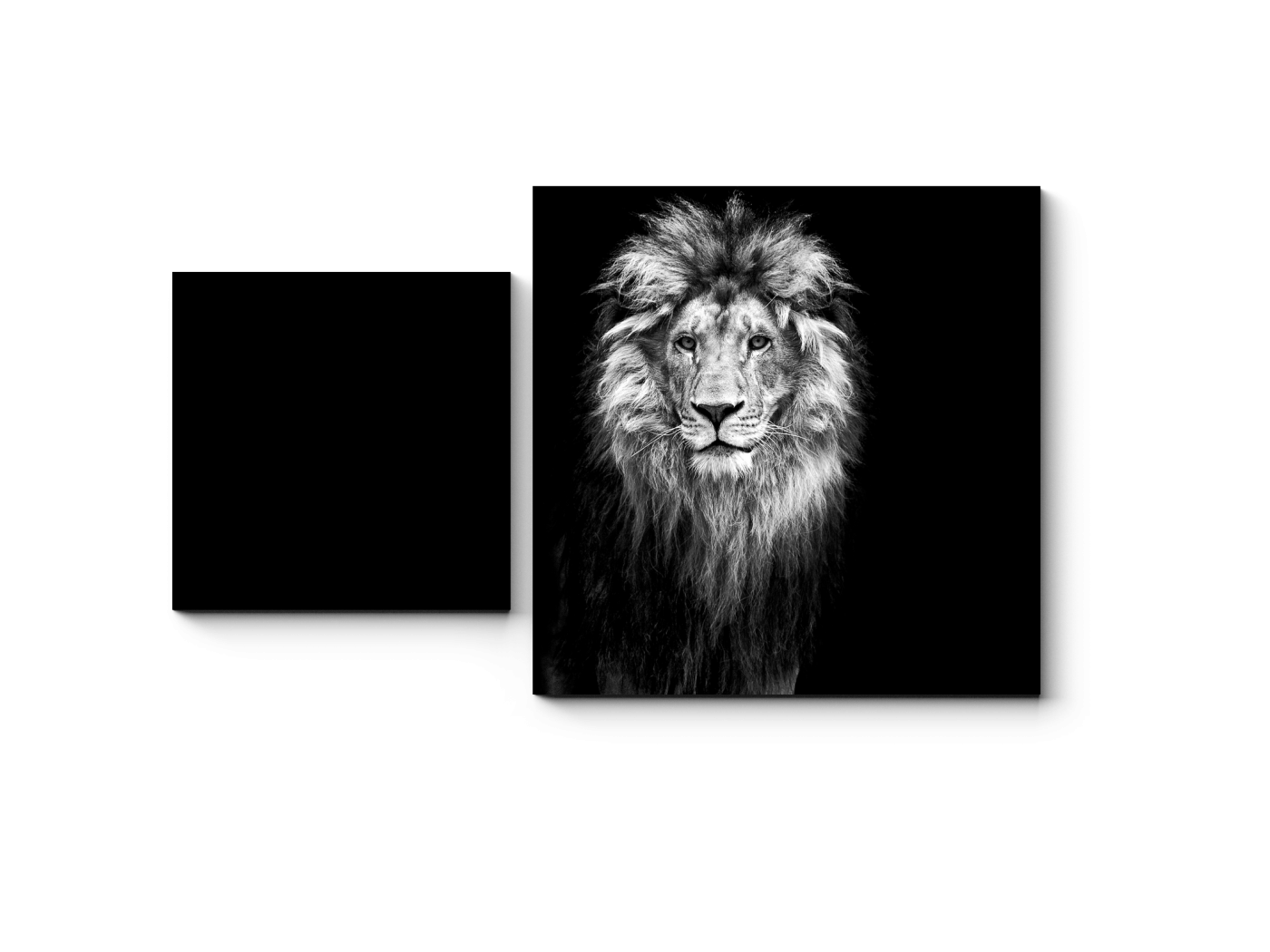 Модульная картина Портрет льва в темноте (50x30) фото