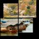 Цветение сакуры у берегов реки Кацура, Киото