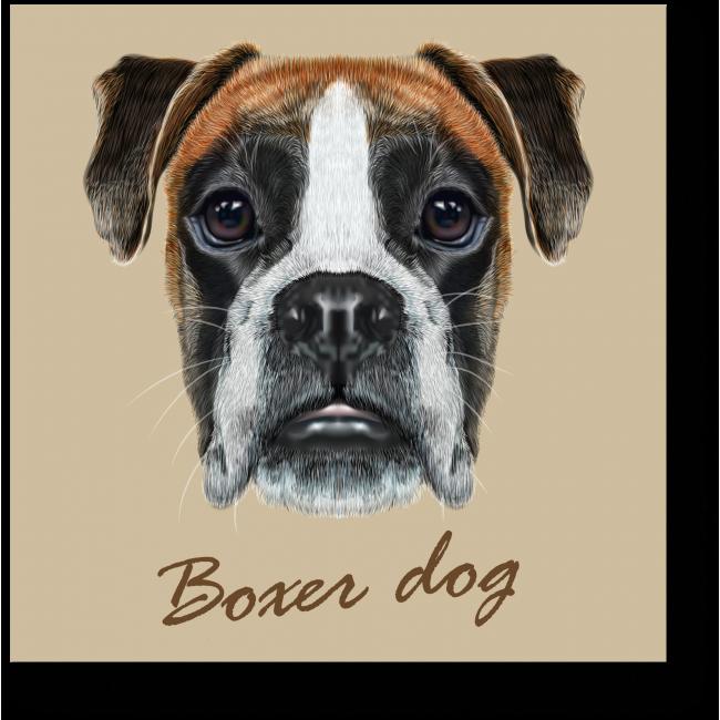 Модульная картина Портрет боксера
