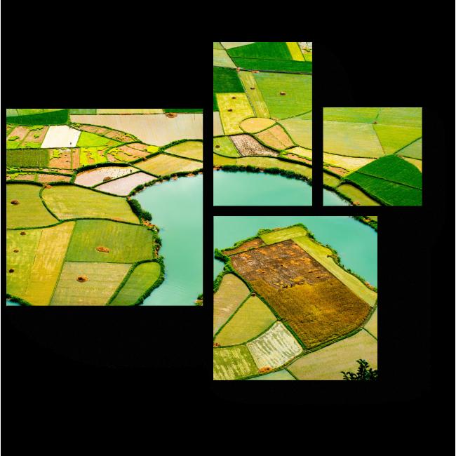 Модульная картина Рисовые поля Вьетнама