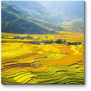 Рисовые поля у подножия гор Вьетнама