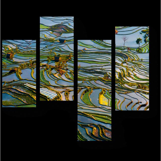 Модульная картина Сезон паводков на полях Вьетнама