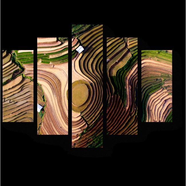 Модульная картина Рисовые поля с высоты птичьего полета