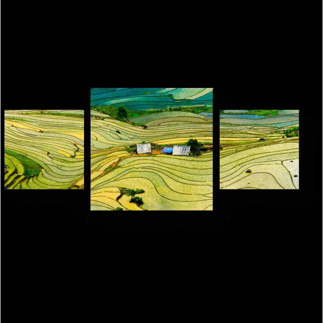 Модульная картина Рисовые поля в провинции Вьетнама