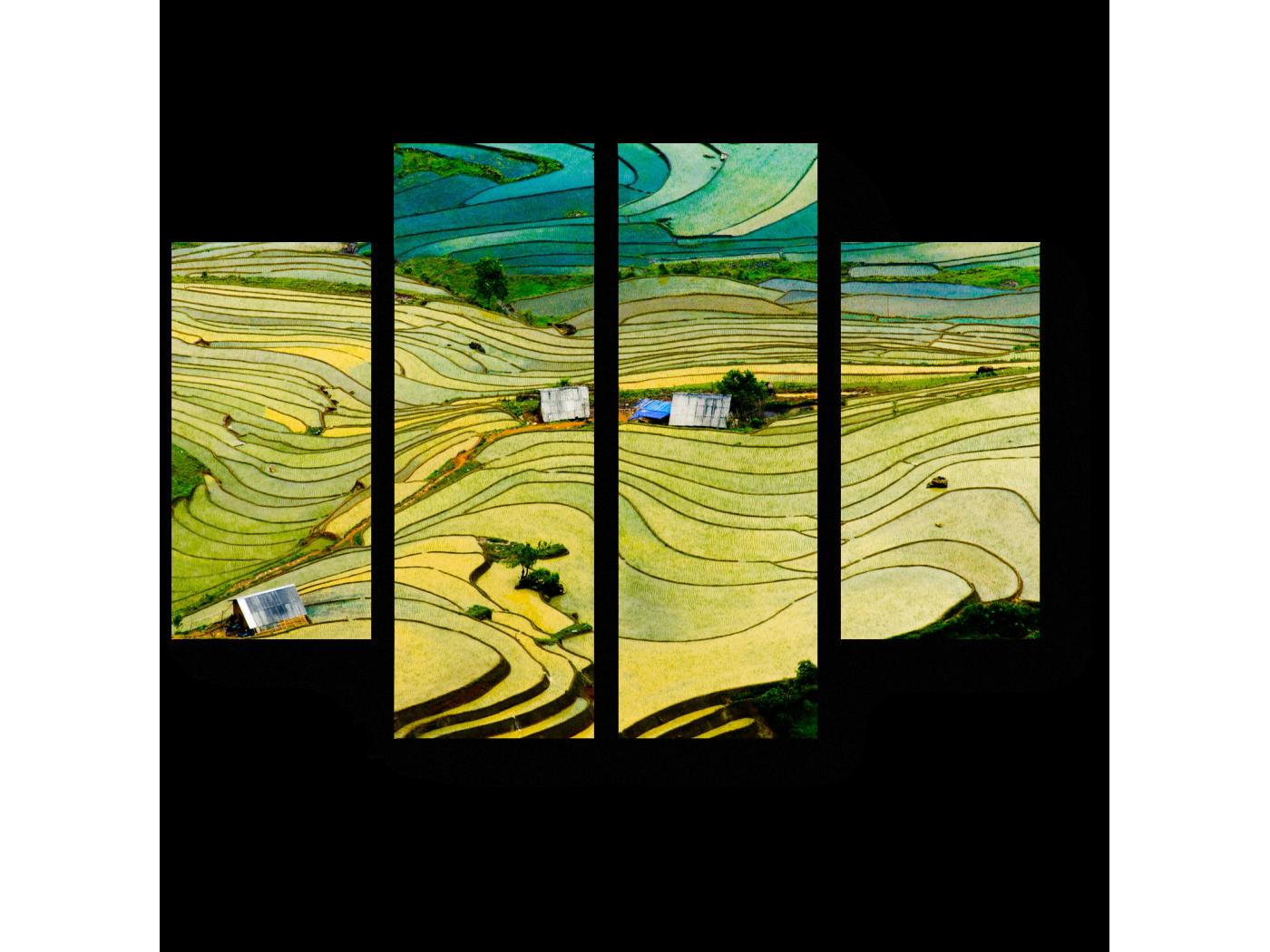 Модульная картина Рисовые поля в провинции Вьетнама (80x60) фото