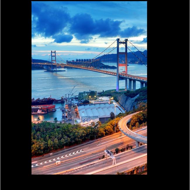 Модульная картина Великолепный вид на знаменитый мост Гонконга