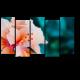 Макро цветок