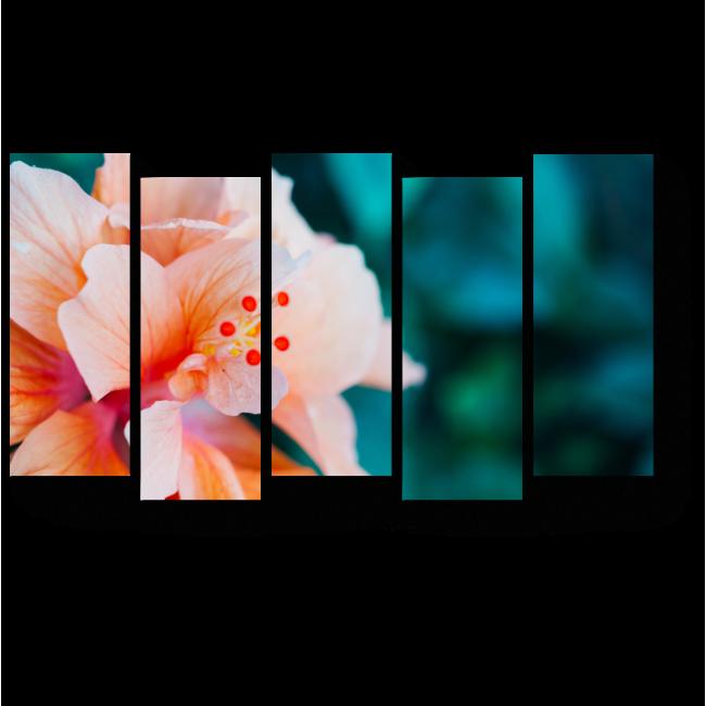 Модульная картина Макро цветок