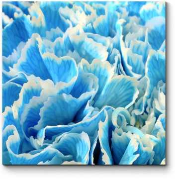 Модульная картина Море цветов