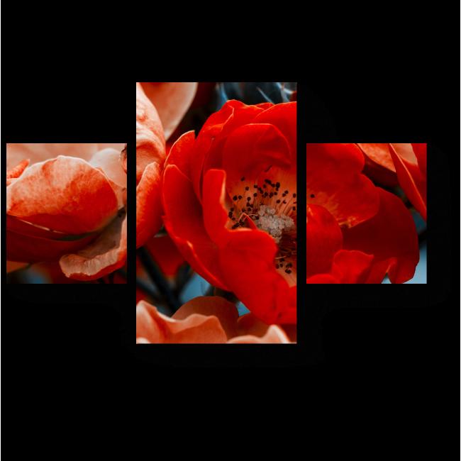 Модульная картина Необычная роза