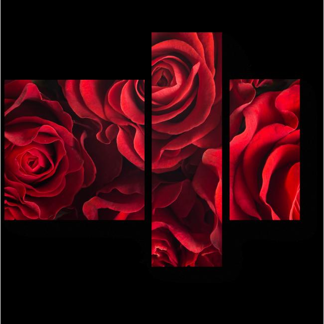 Модульная картина Бархатные розы