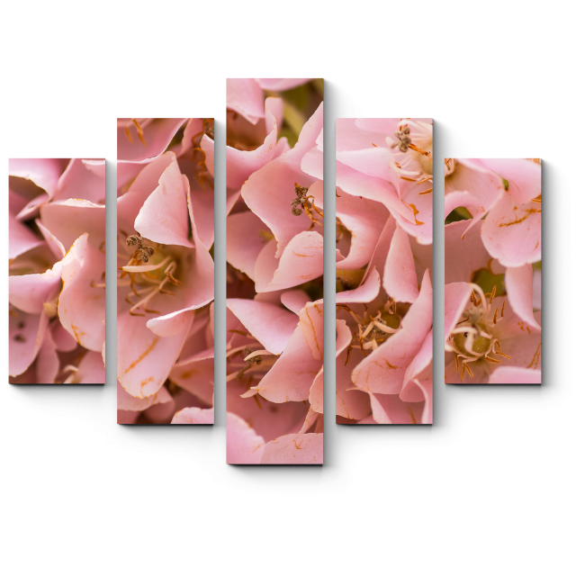 Модульная картина Розовые лепестки