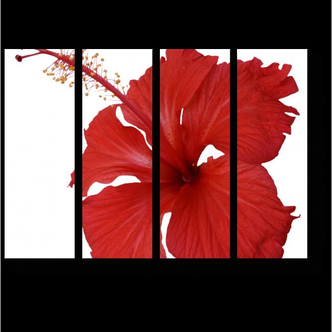 Модульная картина Красный гибискус