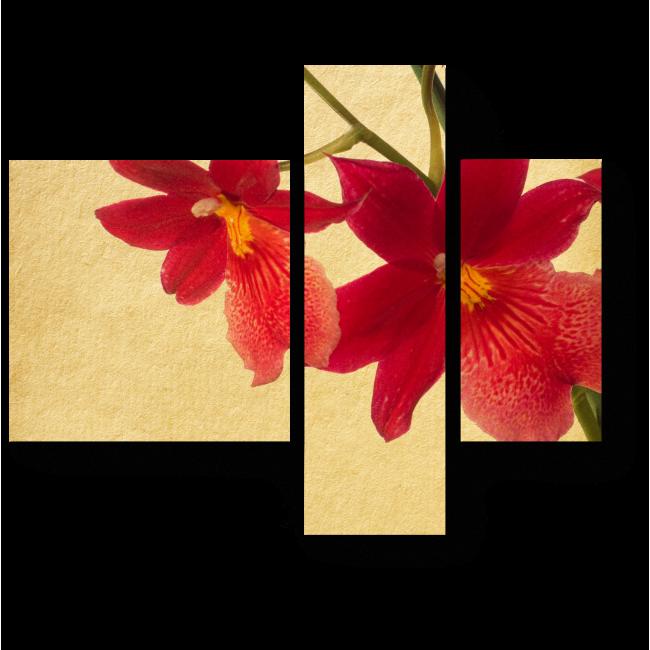 Модульная картина Красные орхидеи