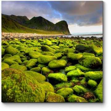 Необычный берег Норвегии