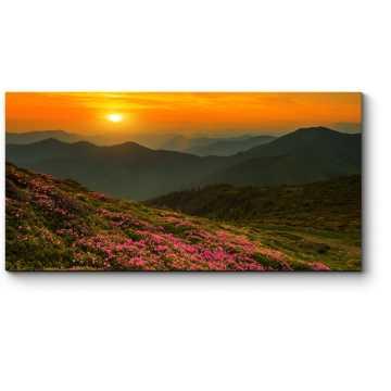 Волшебные розовые цветы в горах