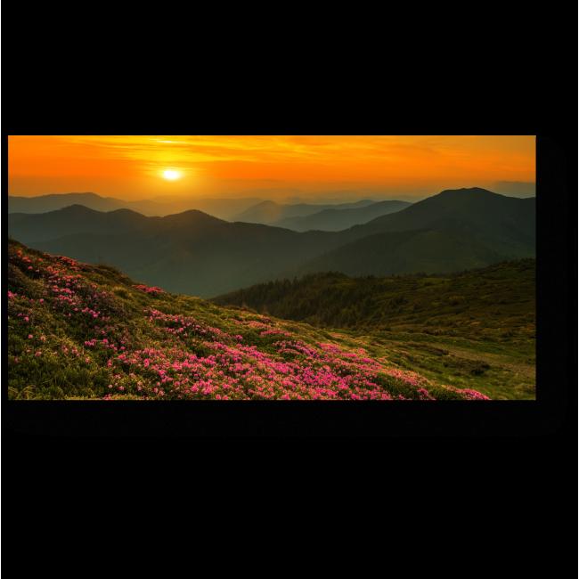 Модульная картина Волшебные розовые цветы в горах