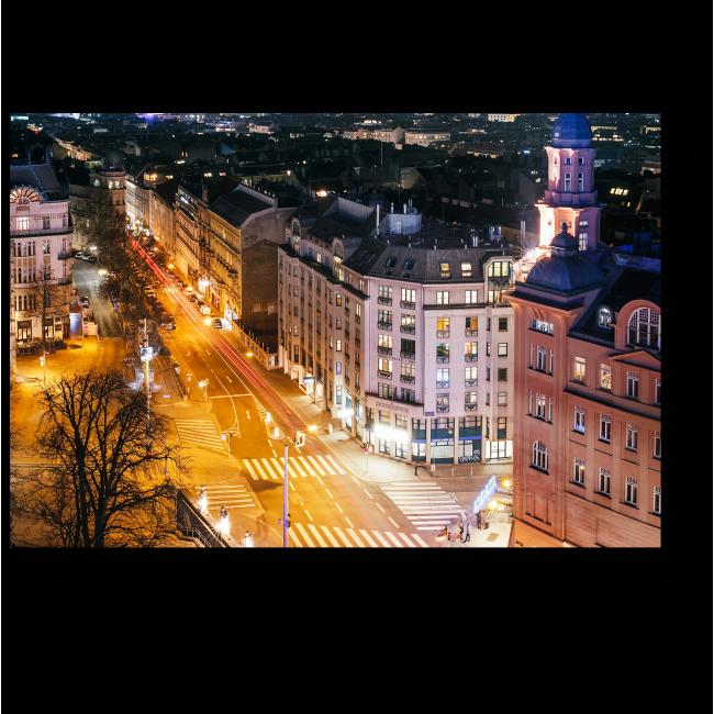 Модульная картина Ночная Вена