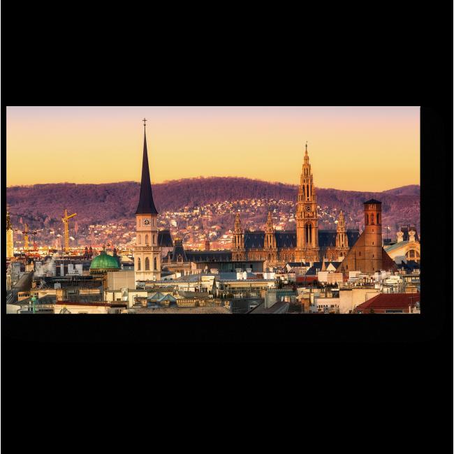 Модульная картина Неповторимый вид на крыши Вены