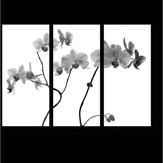 Модульная картина Изящные ветки