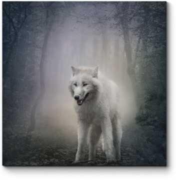 Ночной страж леса
