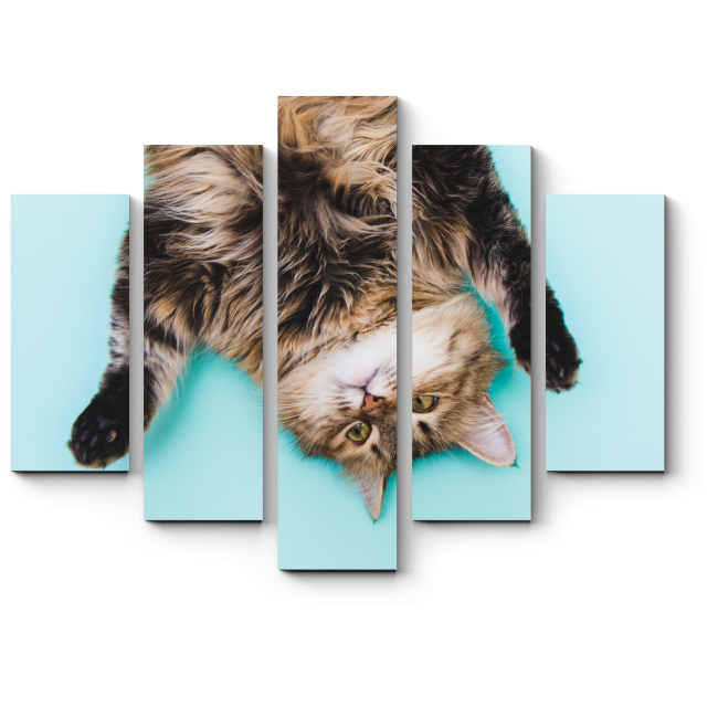 Модульная картина Кот наоборот